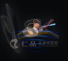 CZT--8F声频共振消炎术专